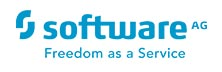 Software AG: Improving Operational Performance Enterprise Wide