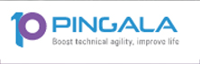 Pingala Software: For The Rapidly Changing Digital World