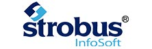 Strobus Infosoft: Transcending Technological Assistance to Financial Services Companies