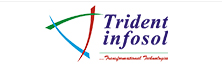 Trident Infosol: Serving Transformation Technologies in the Embedded Space