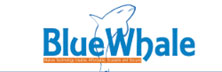 BlueWhale Technologies: Helping Enterprises to Build More Resilient Cloud Solutions