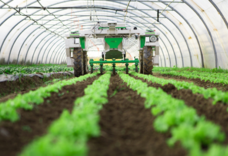 Technological Innovations Disrupting the Modern Farming Sector