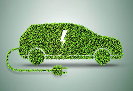 India's Electric Vehicle (EV) Market is Blooming