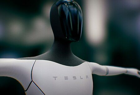 Tesla Has a Personal Bot-ssistant for You