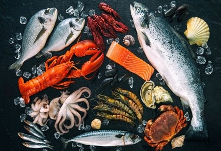 Captain Fresh Fishes $ 12 Million in a Series A Funding Round